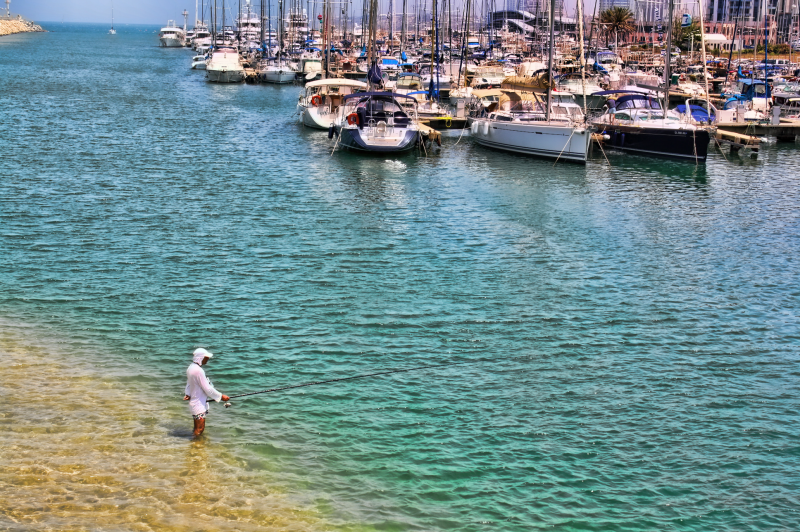 Fishing at the Herzliya Marina