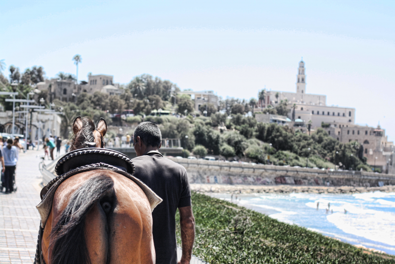 Man with horse on the way to Jaffa